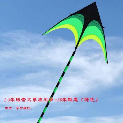 卡通1风易飞潍坊儿童超大线轮软体三角长尾风筝新款大型
