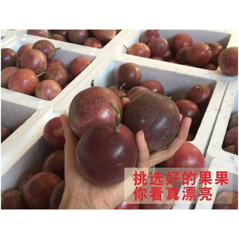 【买4送1】百香果5斤3/2/1斤热带水果新鲜百香果批发现摘精选大果_6