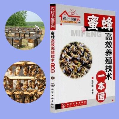 蜜蜂养殖技术大全高产养蜂技术视频教程蜂王培育18教程1书籍